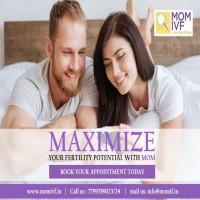 fertility services   infertility treatments   infertility doctors